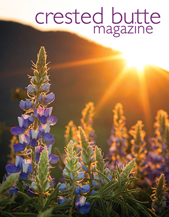 Summer 2020 :: Click to VIEW CURRENT ISSUE!